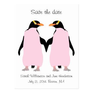 Carte Postale Économies d'homosexuel la date, pingouins roses