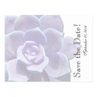Carte Postale Économies lilas translucides de Succulent la date