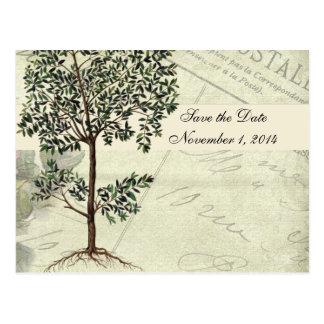 Carte Postale Économies vintages du Myrte d'Italien la date