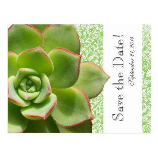 Carte Postale Économies vintages succulentes vertes de damassé