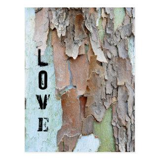 Carte Postale Écorce d'arbre, amour, rustique