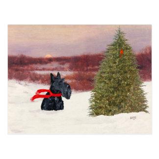 Carte Postale Écossais Terrier dans l'hiver