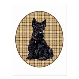 Carte Postale Écossais Terrier sur le plaid