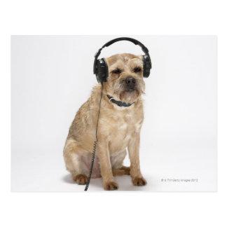 Carte Postale Écouteurs de port de petit chien