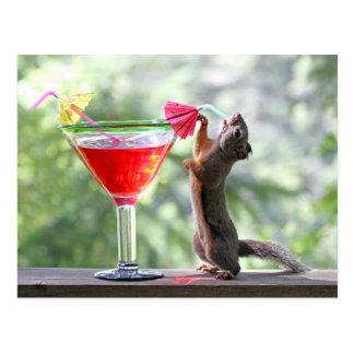 Carte Postale Écureuil buvant un cocktail à l'heure heureuse