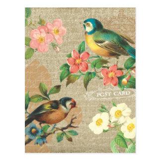 Carte Postale Élégance minable vintage rustique d'oiseaux et de