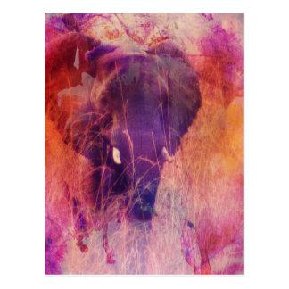 Carte Postale Éléphant