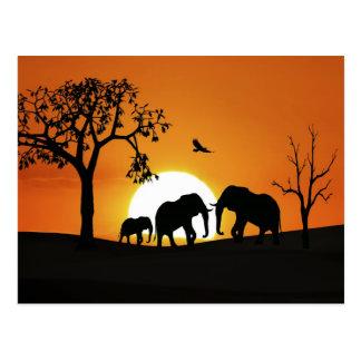 Carte Postale Éléphants au coucher du soleil
