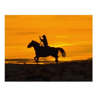 Carte Postale Équitation de cowboy dans le coucher du soleil