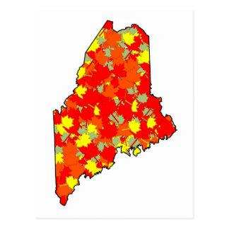Carte Postale Érable du Maine