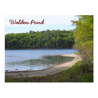 Carte Postale Étang de Walden, accord, mA
