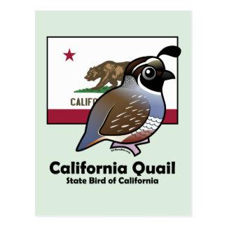 Carte Postale État Birdorable : Cailles de Californie
