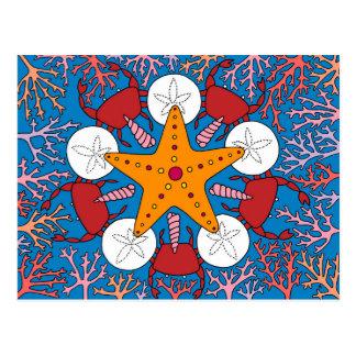 Carte Postale Étoile et corail de mer
