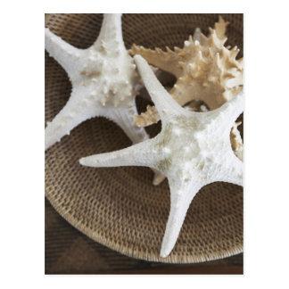 Carte Postale Étoiles de mer dans un panier