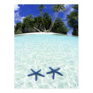 Carte Postale Étoiles de mer, îles de roche, Palaos