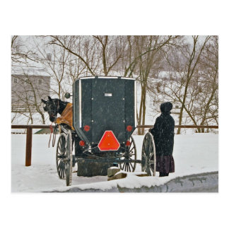 Carte Postale Femme amish avec le cheval et l'Avec des