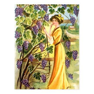 Carte Postale Femme dans le vignoble