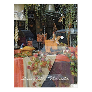Carte Postale Fenêtre de boutique de cadeaux - Dunedin