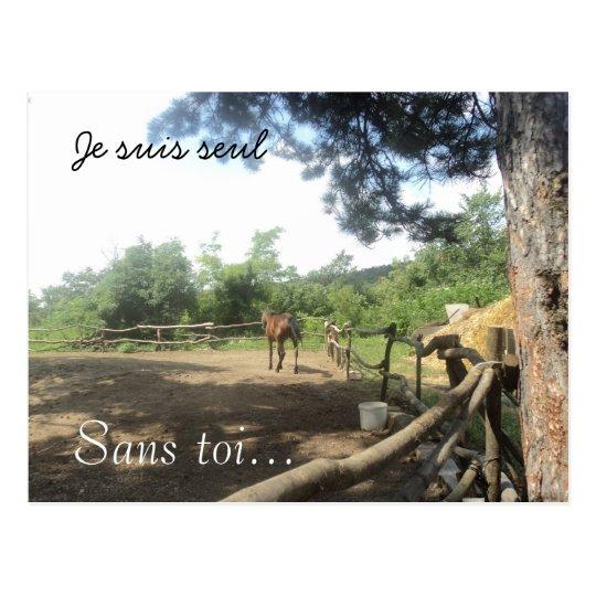 Carte Postale Ferme de cheval dans les bois