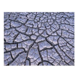 Carte Postale Fermez-vous de la boue criquée dans un paysage