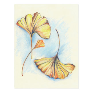 Carte Postale Feuille d'or de Ginkgo d'automne
