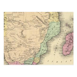 Carte Postale Feuille du sud de l'Afrique
