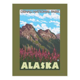 Carte Postale Fireweed et montagnes - parc national de Denali,