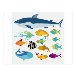 Carte Postale fish design