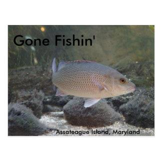 Carte Postale Fishin allé à l'île d'Assateague, DM