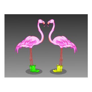 Carte Postale Flamants roses portant des bottes de caoutchouc