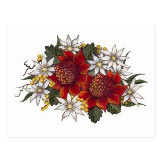 Carte Postale Fleur de flanelle de Warratha