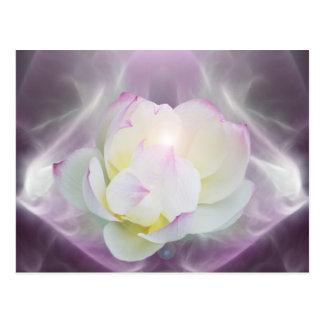 Carte Postale Fleur de lotus blanc