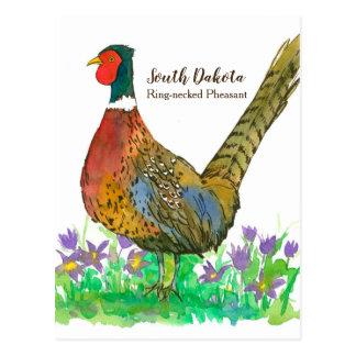 Carte Postale Fleur de Pasque étranglée de faisan d'anneau du