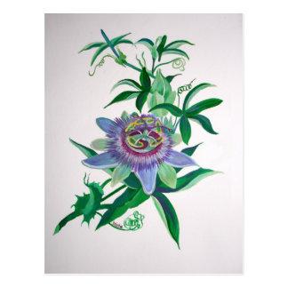 Carte Postale Fleur de passion