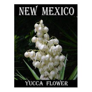 Carte Postale Fleur de yucca du Nouveau Mexique