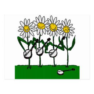 Carte Postale Fleurs de banjo