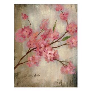 Carte Postale Fleurs de cerisier