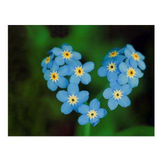 Carte Postale Fleurs en forme de coeur de myosotis