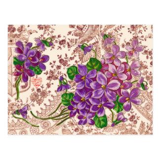 Carte Postale Fleurs roses et pourpres