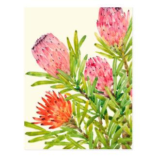 Carte Postale Fleurs tropicales d'aquarelle