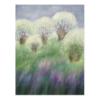 Carte Postale floraison