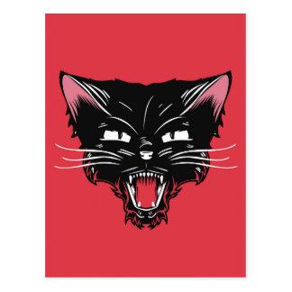 Carte postale folle de chat