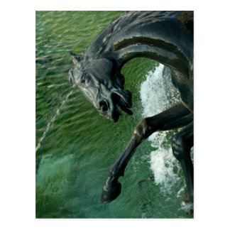 Carte Postale Fontaine de Neptune, Washington DC