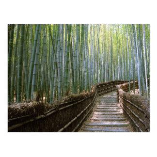 Carte Postale Forêt en bambou à Kyoto
