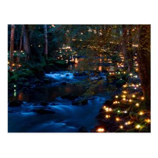 Carte Postale Forêt magique la nuit
