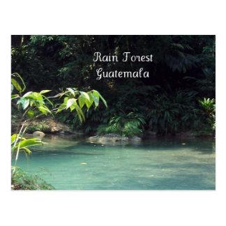 Carte Postale Forêt tropicale, Guatemala