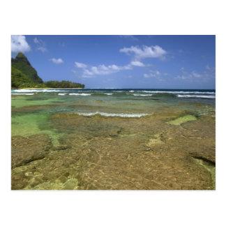Carte Postale Formations de corail sur la plage de tunnels