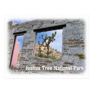 Carte postale fraîche superbe d'arbre de Joshua !