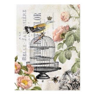 Carte postale française vintage d'oiseau