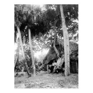 Carte Postale Fuite de rivière indienne, la Floride : 1890s